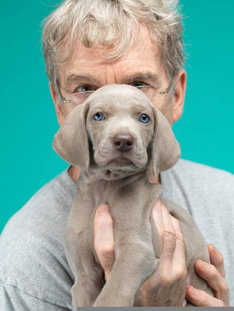 Photo of William Wegman