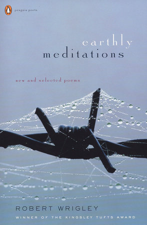 Earthly Meditations by Robert Wrigley