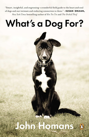 What's a Dog For? by John Homans