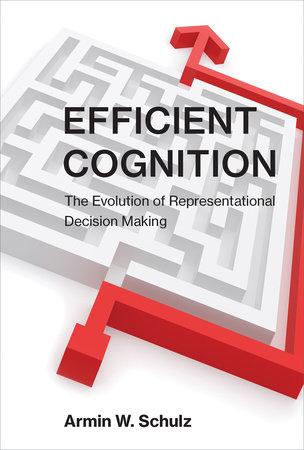 Efficient Cognition by Armin W. Schulz