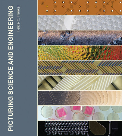 Picturing Science and Engineering by Felice C. Frankel