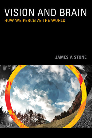 Vision and Brain by James V. Stone