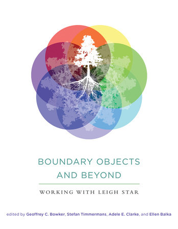 Boundary Objects and Beyond by