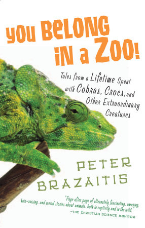 You Belong in a Zoo! by Peter Brazaitis