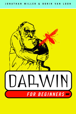 Darwin for Beginners by Jonathan Miller and Borin Van Loon