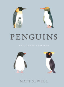 Penguins and Other Seabirds