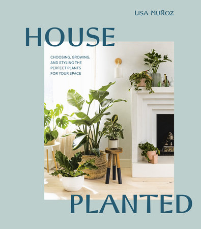 House Planted by Lisa Muñoz