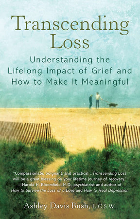 Transcending Loss by Ashley Davis Bush