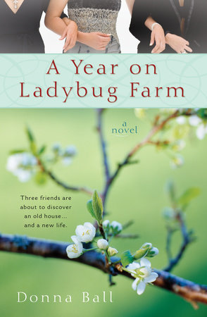 A Year on Ladybug Farm by Donna Ball