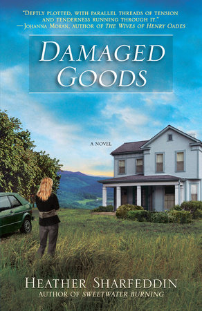 Damaged Goods by Heather Sharfeddin