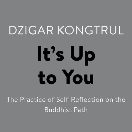 It's Up to You by Dzigar Kongtrul