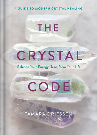 The Crystal Code by Tamara Driessen