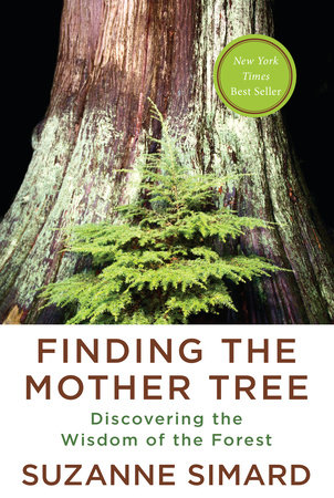 Finding the Mother Tree Book Cover Picture