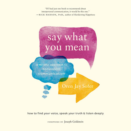 Say What You Mean by Oren Jay Sofer, Joseph Goldstein (Foreword by)