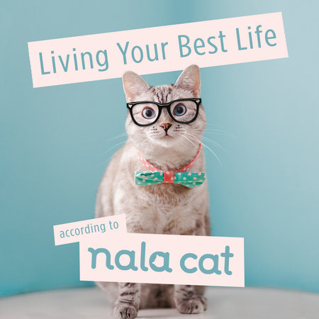 Living Your Best Life According to Nala Cat by Nala Cat