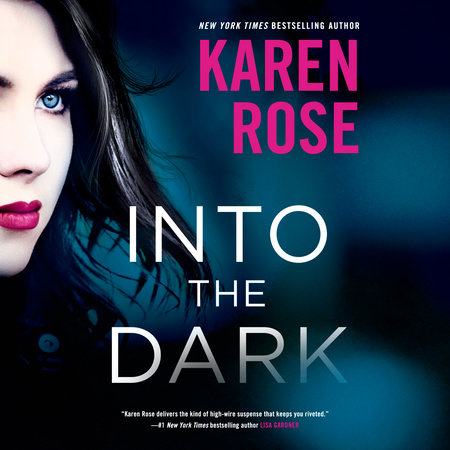Into the Dark by Karen Rose