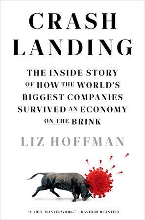 Crash Landing by Liz Hoffman