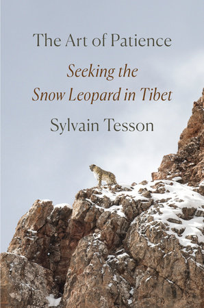 The Art of Patience by Sylvain Tesson