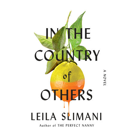 In the Country of Others by Leila Slimani