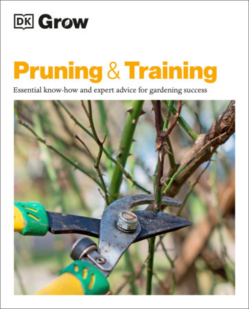 Grow Pruning and Training by DK