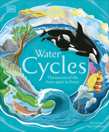 Water Cycles by DK