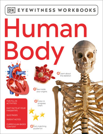 Eyewitness Workbooks Human Body by DK