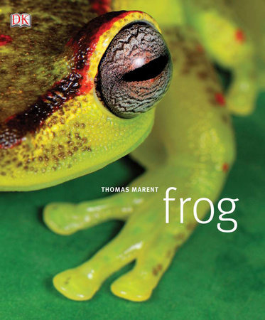 Frog by Thomas Marent and Tom Jackson