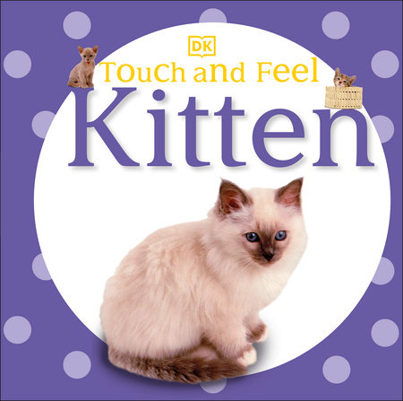 Touch and Feel: Kitten