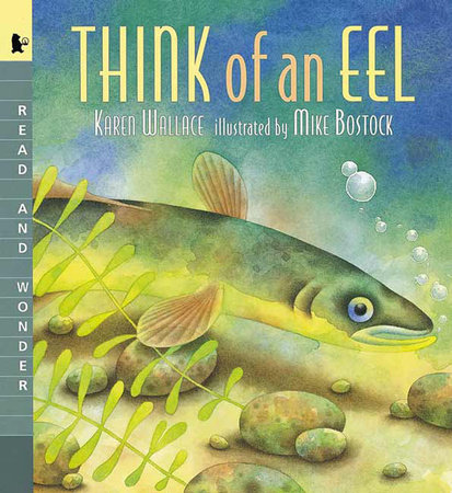Think of an Eel Big Book by Karen Wallace
