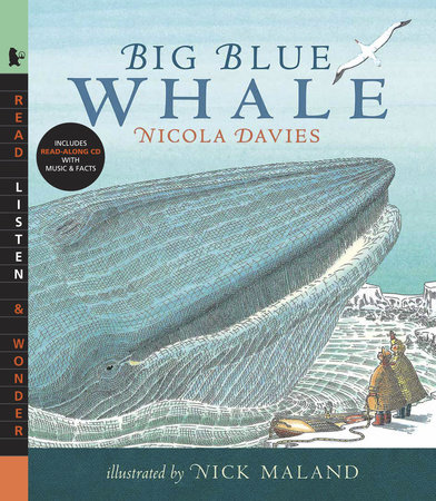 Big Blue Whale with Audio by Nicola Davies