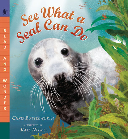 See What a Seal Can Do by Christine Butterworth
