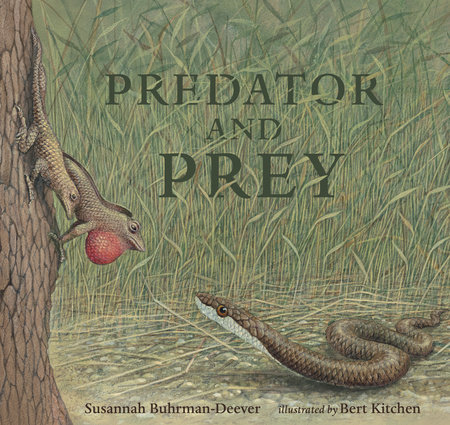 Predator and Prey: A Conversation in Verse by Susannah Buhrman-Deever