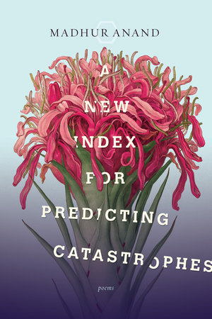 A New Index for Predicting Catastrophes by Madhur Anand