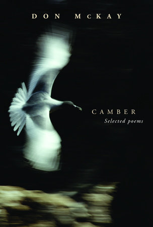 Camber by Don McKay