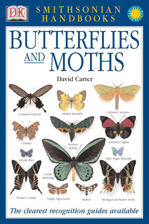Handbooks: Butterflies & Moths by David Carter
