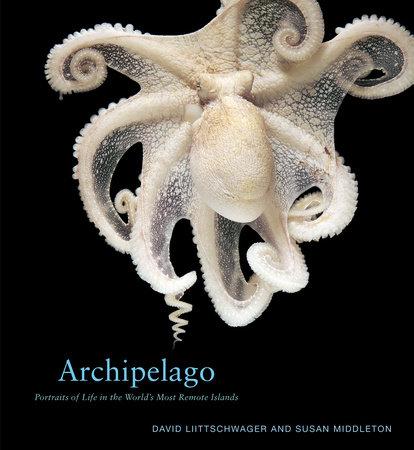 Archipelago by David Liittschwager and Susan Middleton