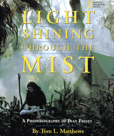 Light Shining Through the Mist by Tom Mathews