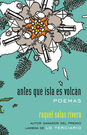 antes que isla es volcán / before island is volcano by Raquel Salas Rivera