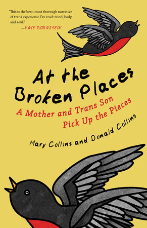 At the Broken Places by Mary Collins and Donald Collins