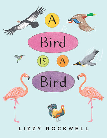 A Bird Is a Bird by Lizzy Rockwell