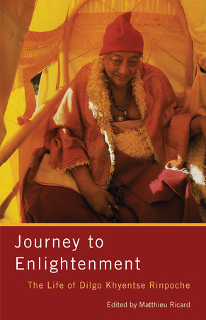 Journey to Enlightenment by Matthieu Ricard