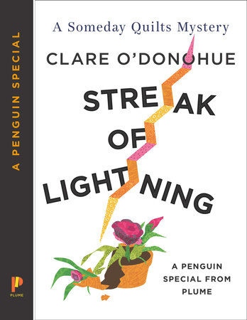 Streak of Lightning by Clare O'Donohue
