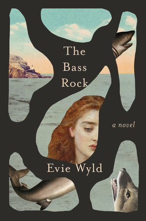 The Bass Rock by Evie Wyld