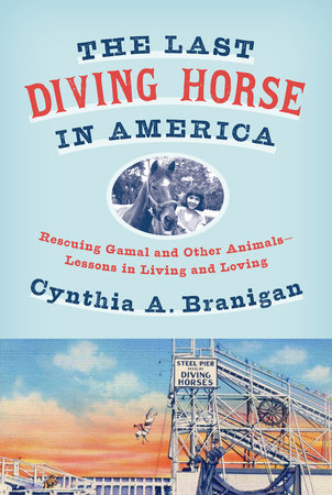 The Last Diving Horse in America by Cynthia A. Branigan