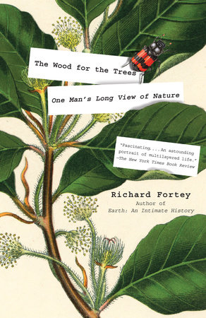 The Wood for the Trees by Richard Fortey
