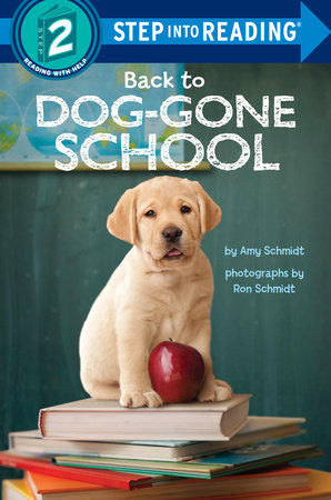 Back to Dog-Gone School by Amy Schmidt