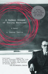 A Madman Dreams of Turing Machines