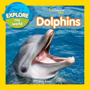 Explore My World Dolphins