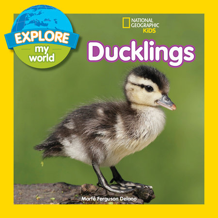Explore My World: Ducklings by Marfe Ferguson Delano