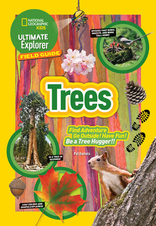 Ultimate Explorer Field Guide: Trees by Patricia Daniels